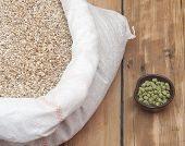 picture of malt  - Barley beans - JPG