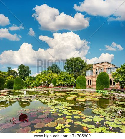 Pond With Waterlilies In Public Park