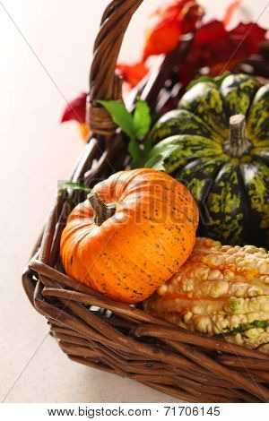 Basket with pumpkins on white background