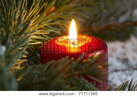 Christmas red candle wit fir closeup