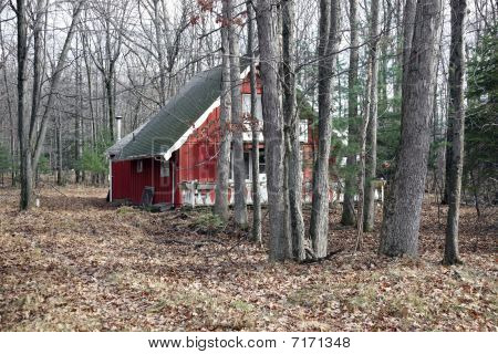 Red House In The Woods