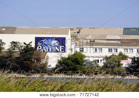 The Buildings Of The Industrial Enterprise Saline Aigues-mortes