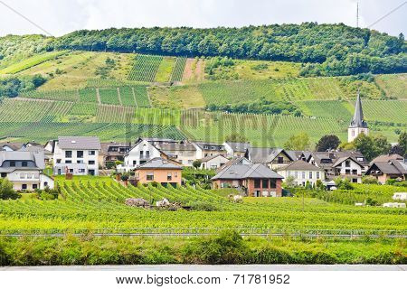 Vineyards On Hills And Ellenz Poltersdorf Village