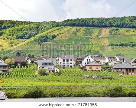 Ellenz Poltersdorf Village And Vineyard On Moselle