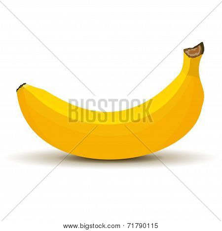 Banana in vector