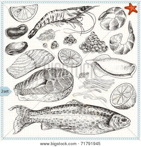 Collection of seafood, hand-drawn illustration in vintage style, set 2.