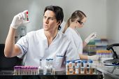 stock photo of chemistry technician  - Male technician analyzing blood sample in medical laboratory - JPG