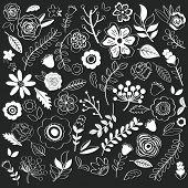 image of single flower  - Chalkboard Hand Drawn single Flowers - JPG