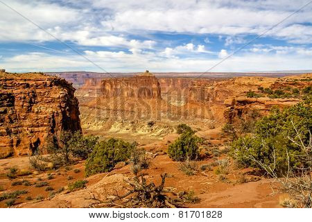 Arches National Park,utah,usa