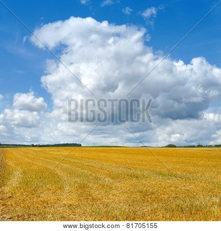 Stubble field with approaching clouds