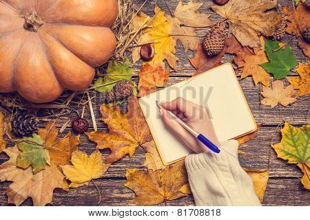 Female Hand Wrinig Something In Notebook On Autumn Background.