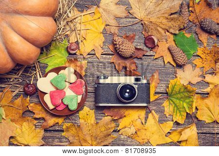 Vintage Camera And Cookie On Autumn Table.