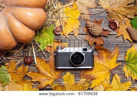 Vintage Camera On Autumn Table.