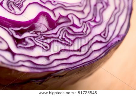 red cabbage close up - selective focus