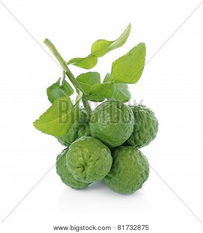 Citrus Hystrix, Bergamot Fruit,  Kaffir Lime,  Leech Lime  Isolated On White Background