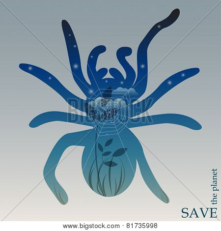 theme of protection of nature and animals with night forest with web in silhouette of spider