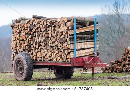 Firewood On Trailer