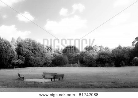 The Bench In The Park During Early Spring Day