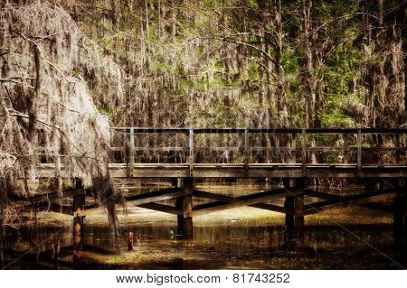 Caddo Swamp Towns