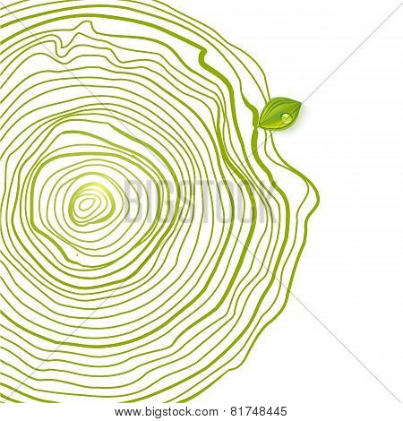 Green Eco Friendly Drawing Circles With Leaf