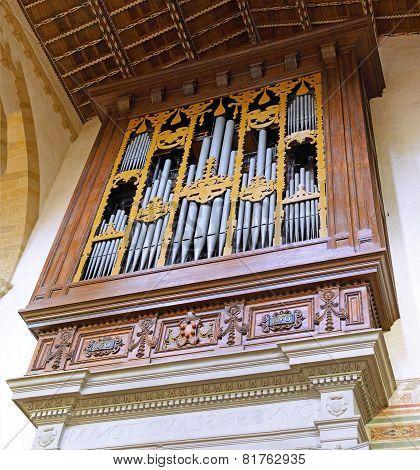 Organ In Duomo Santa Maria Del Fiore . Florence