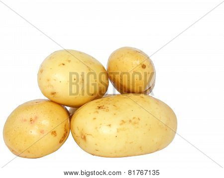 Young Potatoes . Isolated
