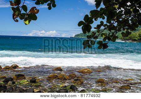 Tahiti Dreaming