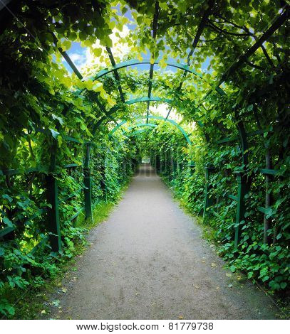 Green archway i