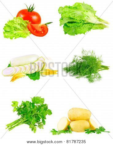 Collage Of Vegetables On White Background.