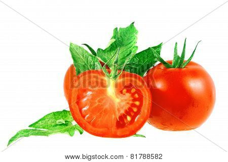 Lush Tomatos With Green Leafs. Isolated