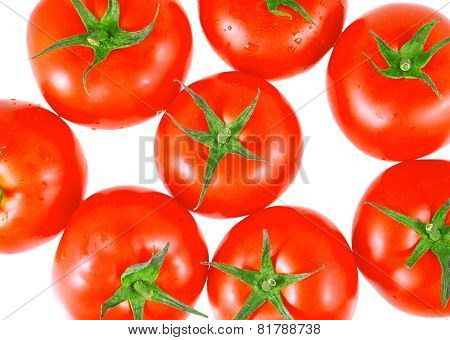 Lush Tomatos With . Isolated