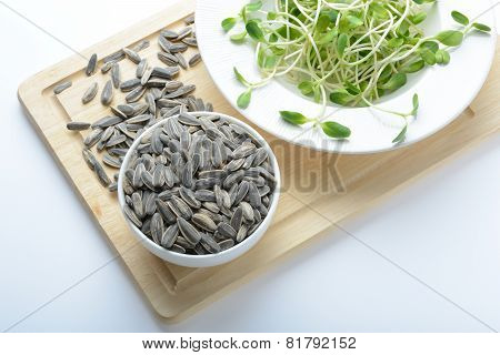 Green Young Sunflower Sprouts On Salad Plate And Sunflower Seeds