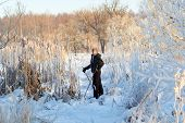 stock photo of nordic skiing  - Boy having a fun with cross country skiing at the sunny winter day - JPG