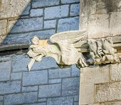 picture of gargoyles  - A stone gargoyle on a Welsh church tower on a bright summers day