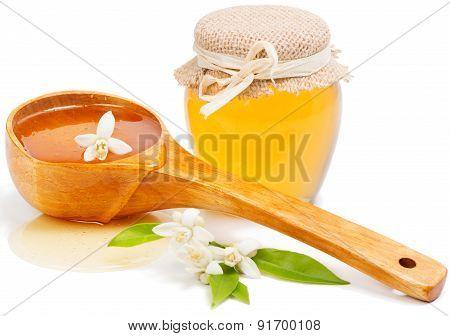 Honey Of  Azahar