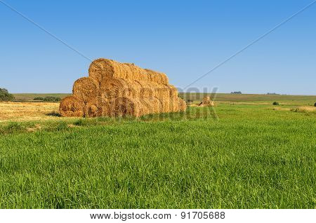 Yellow Rick Of Hay On The Meadow