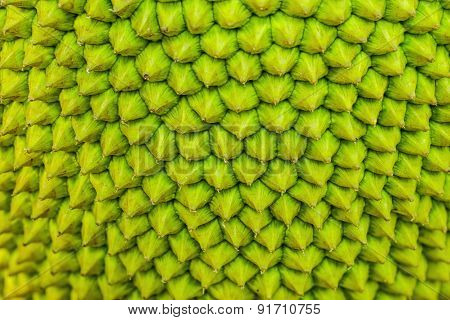 Peel The Fruit Surface