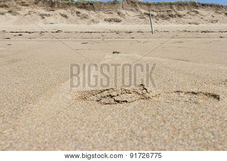 When it's low tide