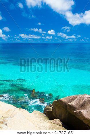 Bay Jungle Shore