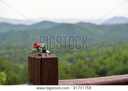 Red, rose boutonniere on wooden post with mountain range in background