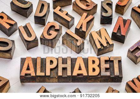 alphabet word typography in vintage wood type printing blocks against artist canvas