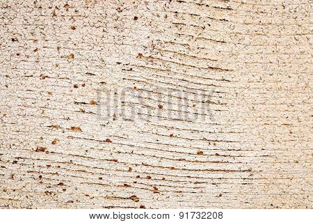 background texture of weathered barn wood with grain and white paint peeling off