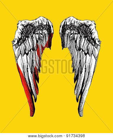 Vector wings. Hand drawn. Vector background