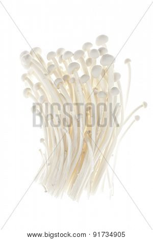 Enoki mushrooms bunch isolated on white background