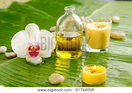 White Orchid and candle ,stone on banana leaf background