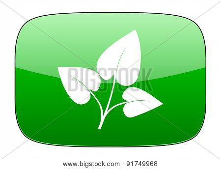 leaf green icon nature sign