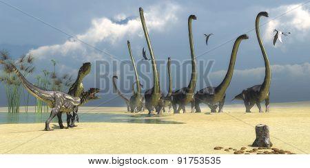 Allosaurus And Omeisaurus Dinosaurs