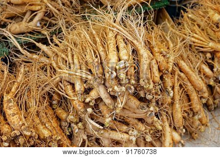 crowd of real ginseng from the North of Korean Republic