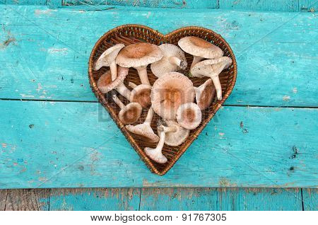 Edible Mushrooms Fungi In Heart Form Wicker Basket