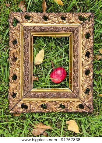 Red  Apple In Antique Picture Frame On Autumn Grass